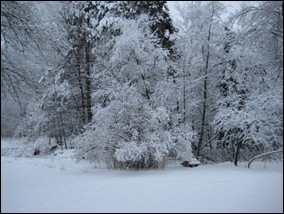 SnowPictures 006